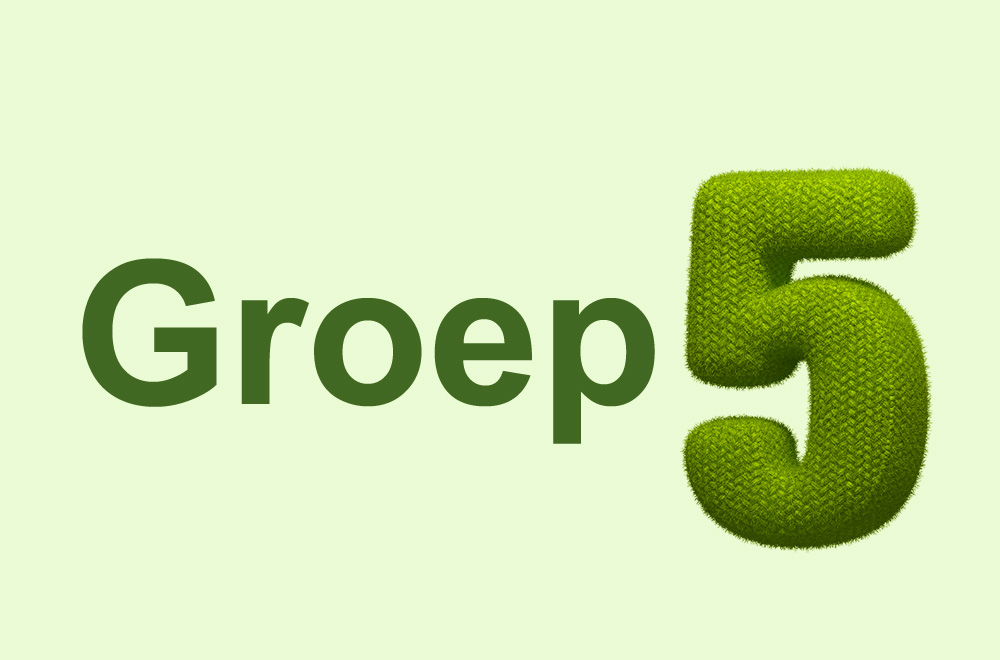 Groep 5 Walsprong copy